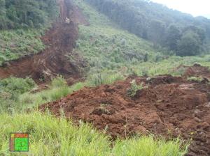 Denuncian ONG daño ambiental por autopista Toluca - Naucalpan / Foto: CDHZL