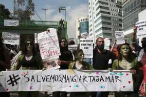 Protesta contra el ecocidio frente a la Semarnat el 25 de enero pasado / Foto: Alfredo Domínguez - La Jornada
