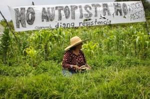 Xochicuautla logra una gran victoria en la defensa de su territorio / Foto: Subversiones